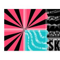 SK Bern